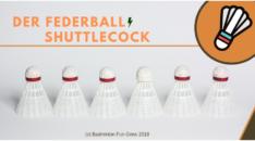 Federball, Badminton Ball und Shuttlecock